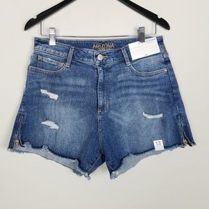 Arizona High Rise Shortie Distressed Shorts A0320